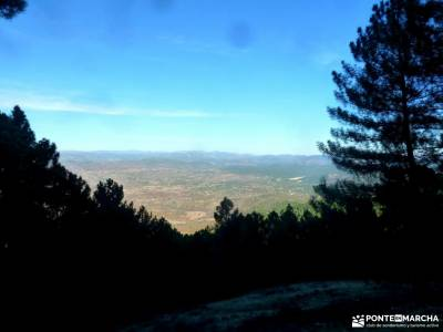 Castañar de El Tiemblo;Ávila; senderismo sierra madrid sitios visitar madrid senderismo madrid rut